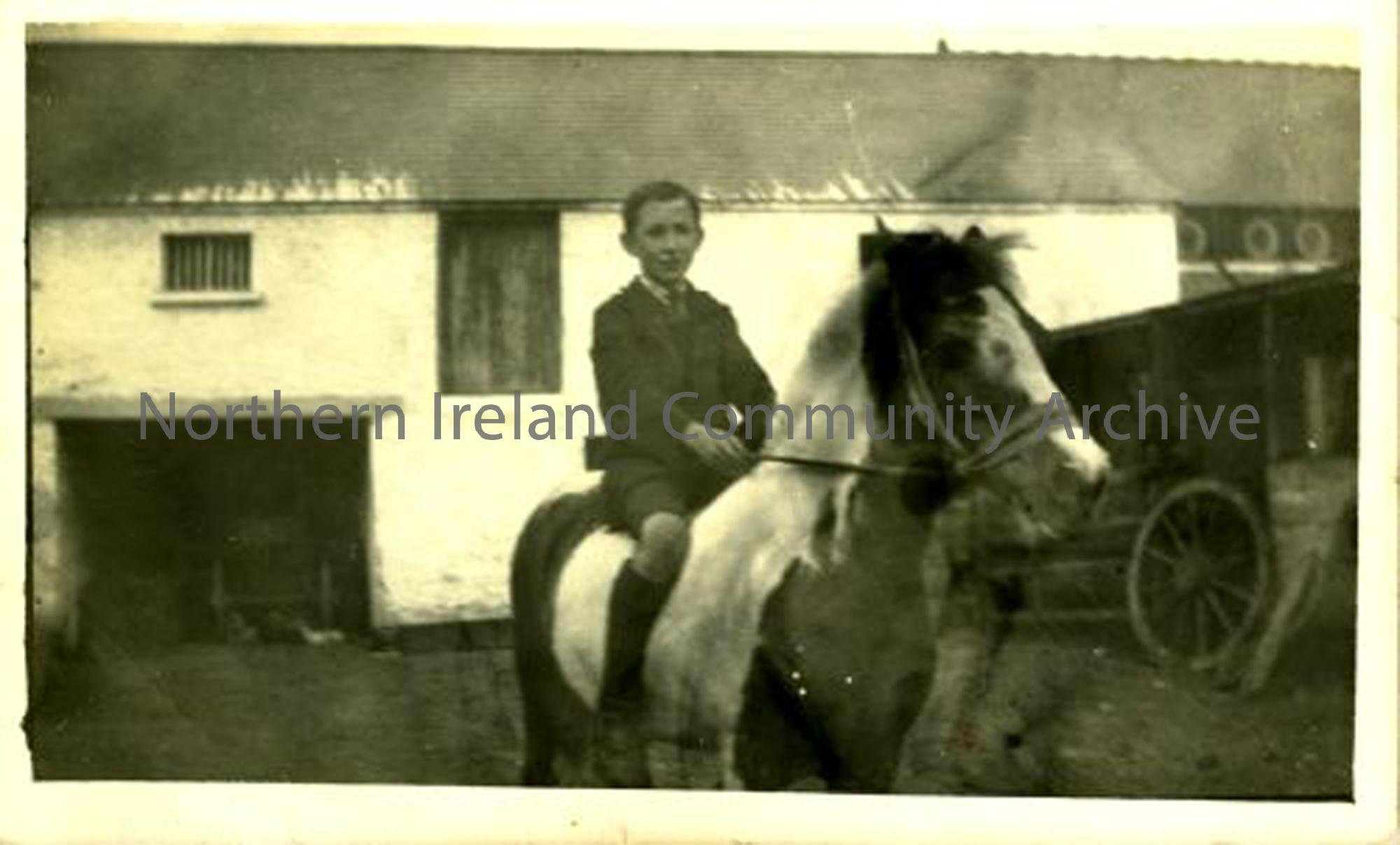 Foncie McErlain in McErlain's yard. The McErlains were rabbit and poultry dealers whose house and business stood where the Castle Community Association building is now. (6434)