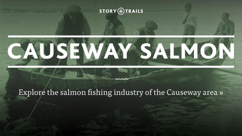 Causeway Salmon